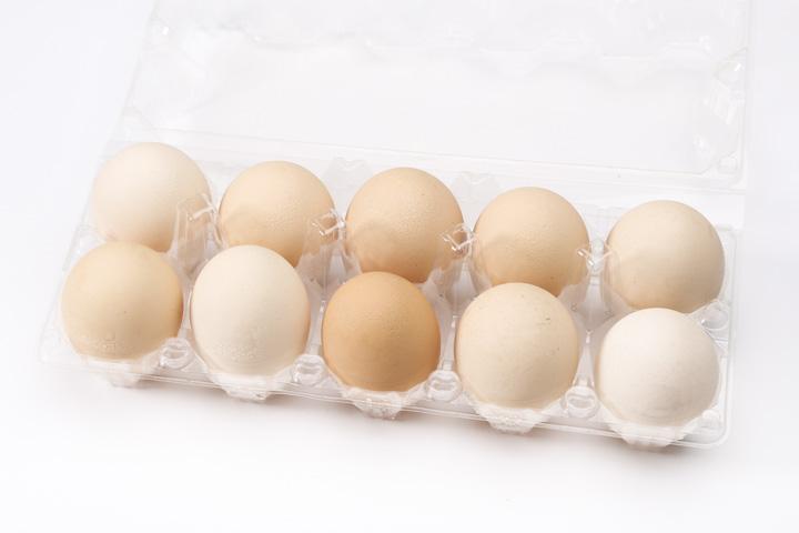 天然土雞紅蛋