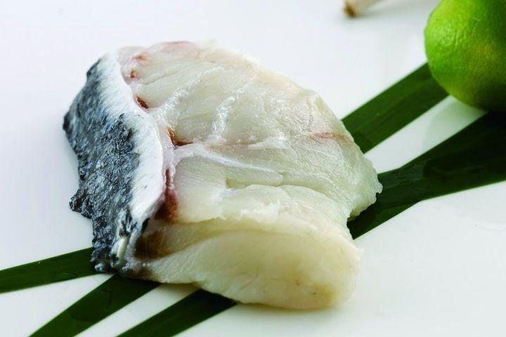 龍膽石斑魚排