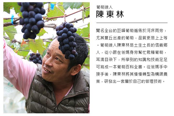 聞名全台的巨峰葡萄遍佈於河床兩旁,尤其豐丘出產的葡萄,品質更是上上等。葡萄達人陳東林是土生土長的信義鄉人,從小跟在爸媽身旁幫忙栽種葡萄,耳濡目染下,所學到的知識和技術足足可寫成一本葡萄百科全書。從爸媽手中接手後,陳東林將其慢慢轉型為精緻農業,研發出一套屬於自己的管理技術。