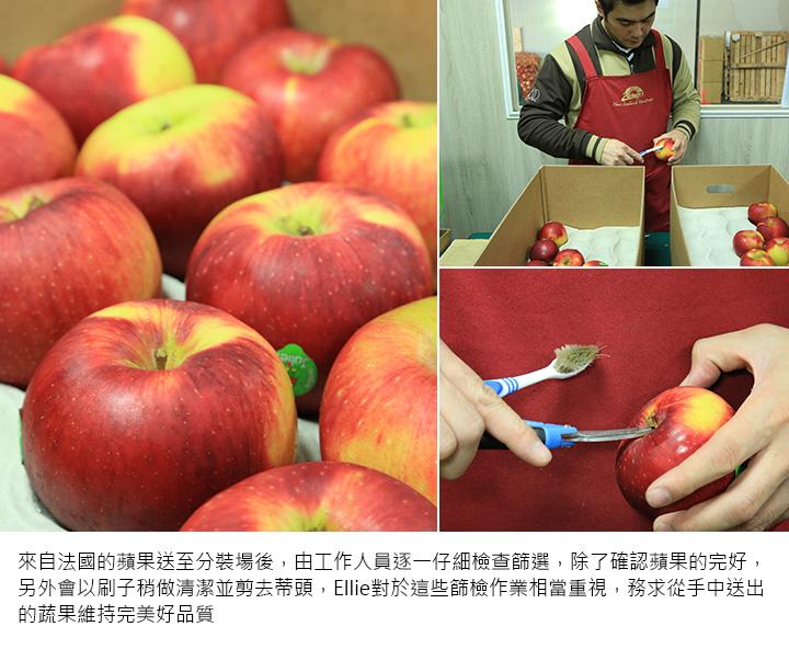 來自法國的蘋果送至分裝場後,由工作人員逐一仔細檢查篩選,除了確認蘋果的完好,另外會以刷子稍做清潔並剪去蒂頭,Ellie對於這些篩檢作業相當重視,務求從手中送出的蔬果維持完美好品質